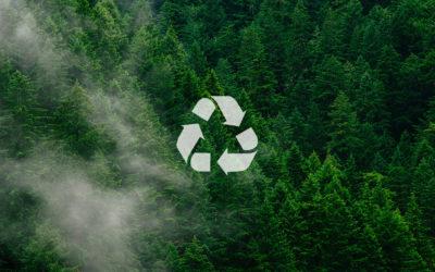 Día Mundial del Reciclaje: empresas de Guadalajara apuestan por la sostenibilidad